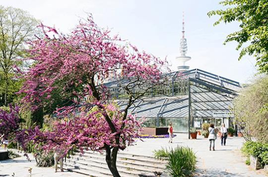 Schaugewächshäuser im Botanischen Garten
