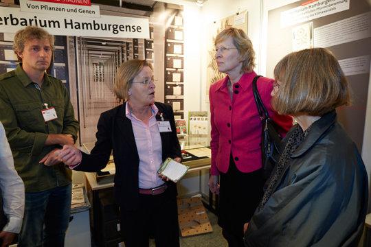 Herbarium Hamburgense