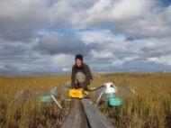 Messen der Methan- und CO2-Emissionen an der Bodenoberfläche in Sibirien