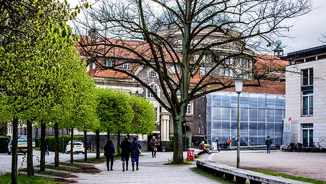 Studierende sitzen in einer blühenden Wiese hinter dem Hauptgebäude