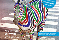 Multicolored zebra on a zebra crossing