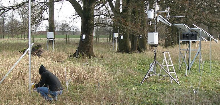 Installation eines Meßsystems zur Analyse des Wasserhaushaltes bei Pflanzen