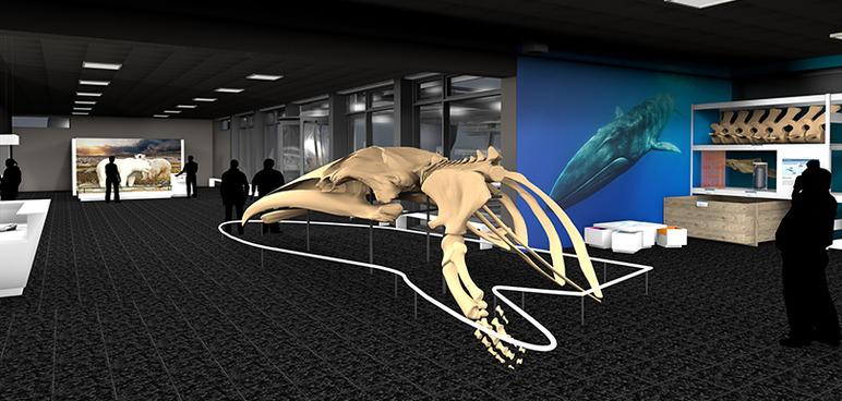 Der neue Eingangsbereich des Zoologischen Museums der Universität Hamburg.