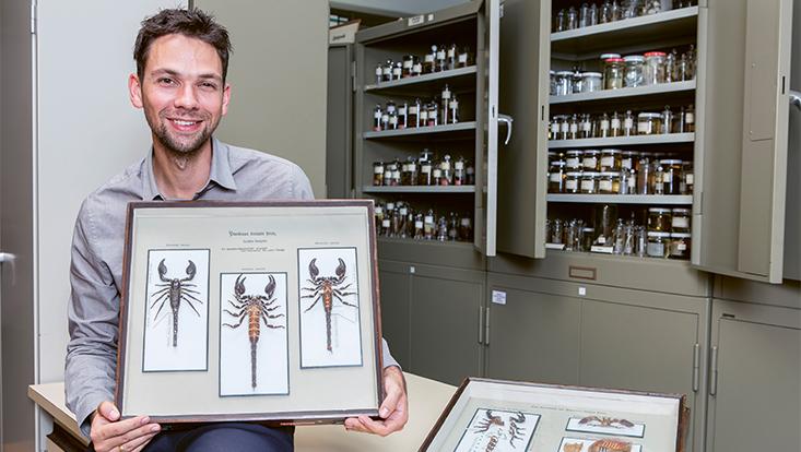 Dr. Danilo Harms mit Skorpionen aus der Sammlung