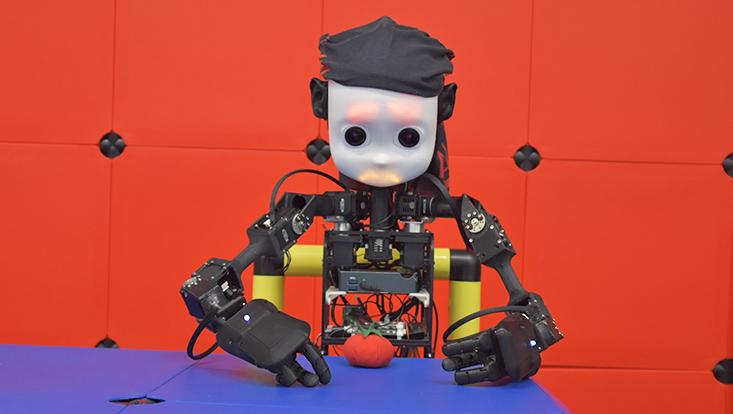 Der Roboter NICO (Neuro-Inspired Companion)