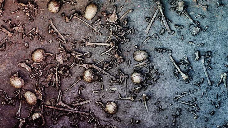 Knochenfunde im Tollensetal