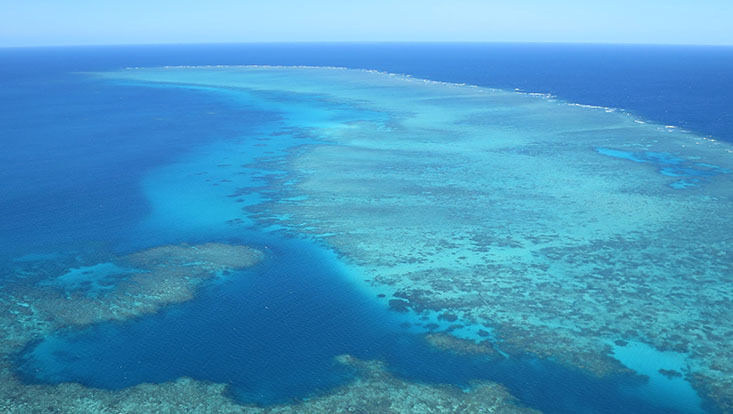 Great Barrier Reef - aerial photography