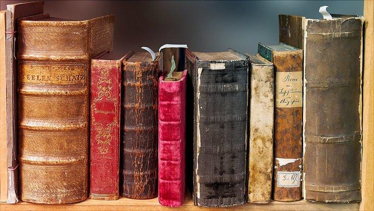 Bücher nebeneinander in einem Regal.