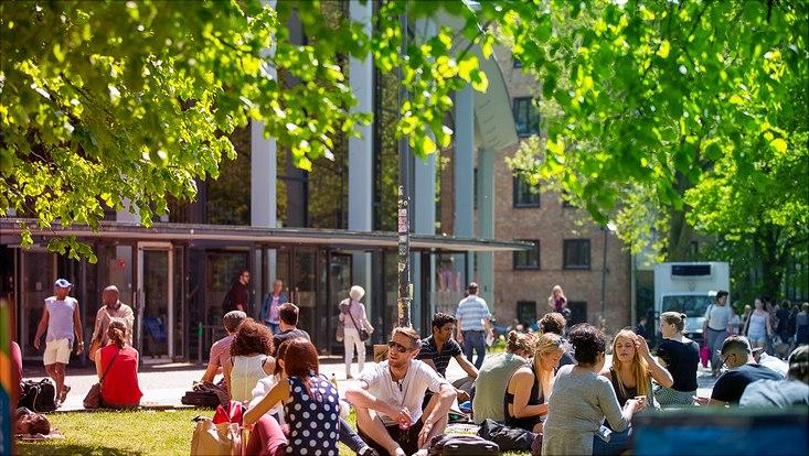 zahlreiche Studenten sitzen draußen vor dem Audimax auf dem Campus und unterhalten sich in der Sonne