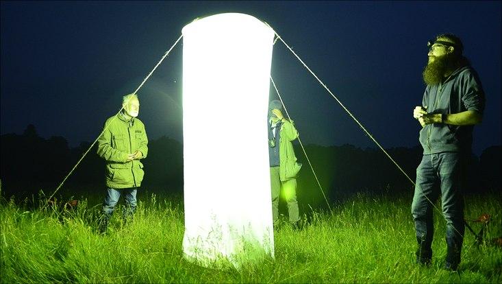An der Alsterschleife in Poppenbüttel sowie im Schnaakenmoor im Westen untersuchten Timo Zeimet (r.) zusammen mit Martin Kubiak und anderen Spezialistinnen und Spezialisten die Vielfalt nachtaktiver Insekten. Dafür nutzten sie einen sogenannten Turm