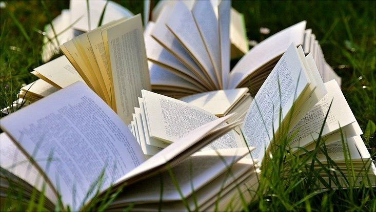 Bücher liegen aufgeschlagen auf einer Wiese.