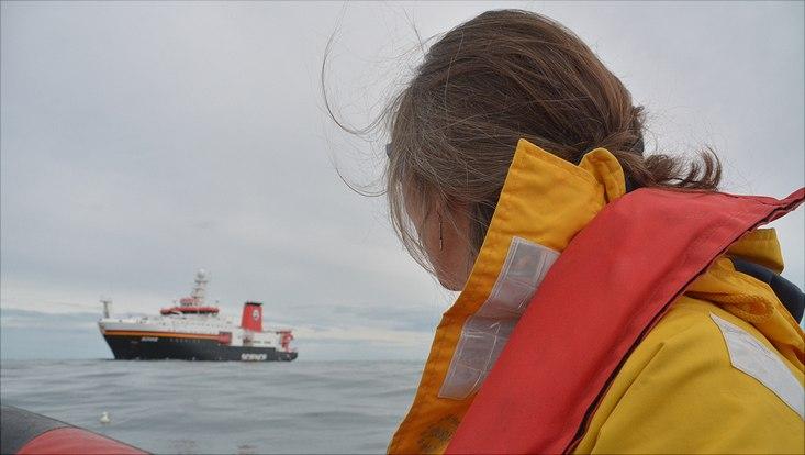 Für Anne-Nina Lörz war es eine aufregende und fruchtbare Expedition. Sie bestimmte an Bord hunderte Amphipoden und freute sich, diese in ihren echten Farben bestaunen zu dürfen. Die in Ethanol aufbewahrten Krebse verlieren schnell ihre Färbungen und