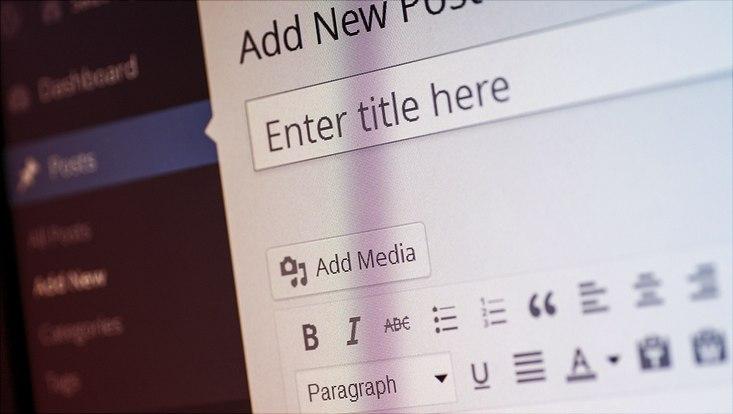 Das Bild zeigt einen Ausschnitt der Wordpress-Benutzeroberfläche.