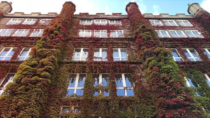 Das Bild zeigt das alte Potgebäude in der Schlüterstraße 51 auf dem Campus