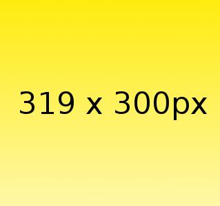 Beispielgrafik 319x300px