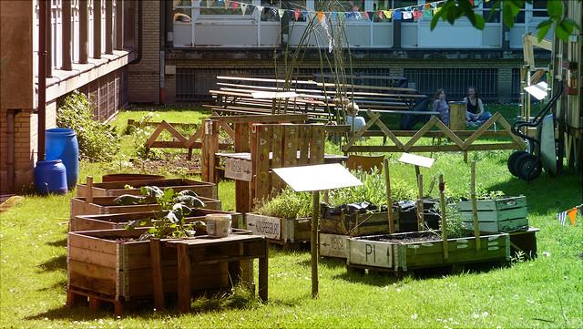 Wurzelwerk Urban Gardening Blumenkästen
