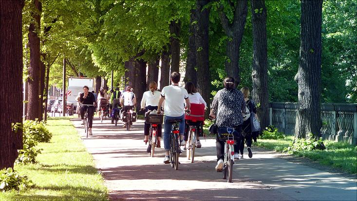 Fahrradfahrer*innen an der Edmund-Siemers-Allee
