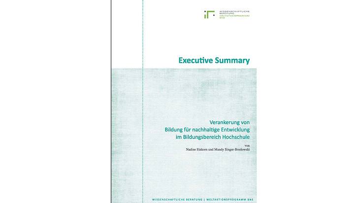 BNE Monitoring Executive Summary