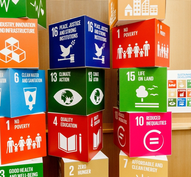 Cubes with SDGs in market of ideas