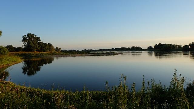 Lebensraum Elbe