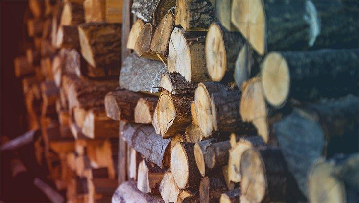 Ein Stapel gehacktes Holz ist zu sehen.