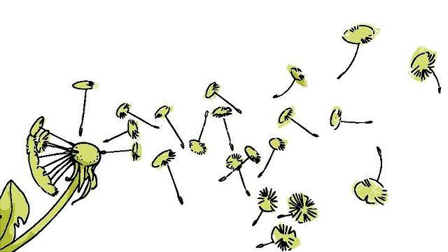 Illustration einer Pusteblume