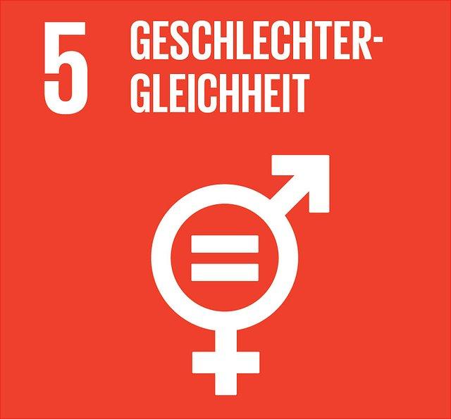 Abbildung SDG 5