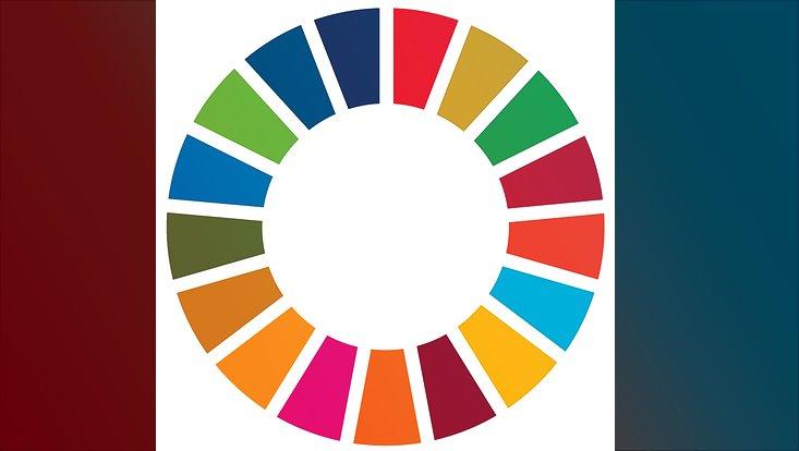 Das Logo der SDGs in Form eines Rads ist abgebildet.