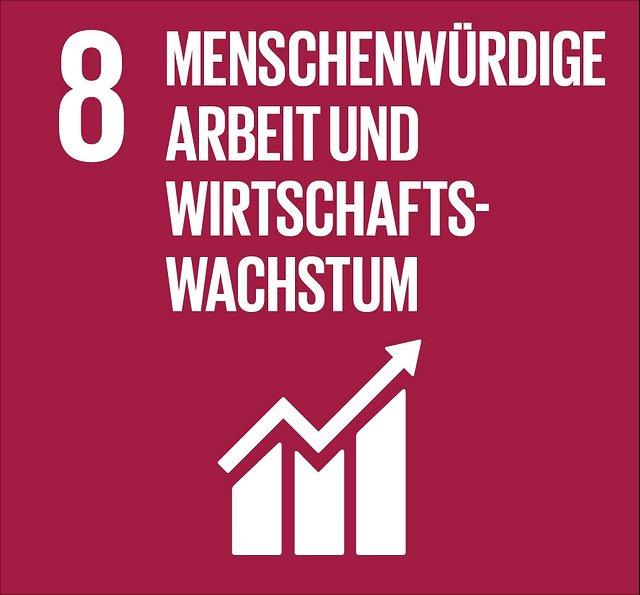 Abbildung SDG 8