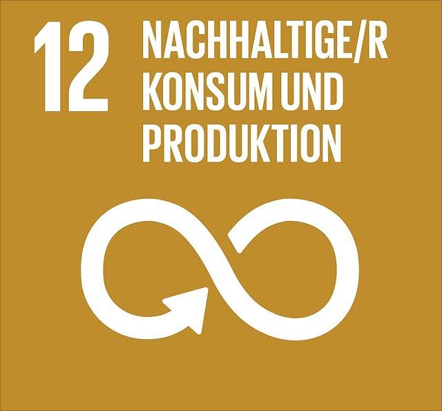 Abbildung SDG 12