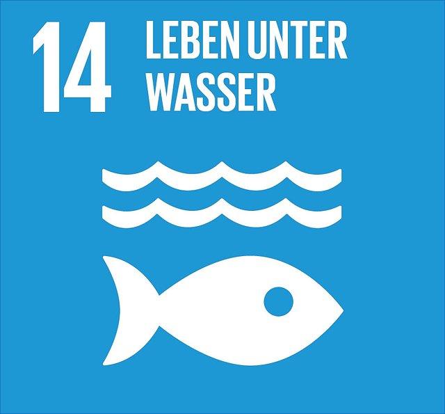 Abbildung SDG 14