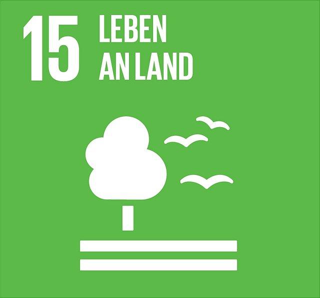 Abbildung SDG 15