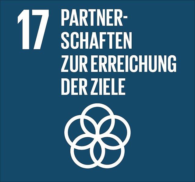 Abbildung SDG 17