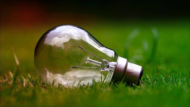 Glühbirne liegt auf Rasen