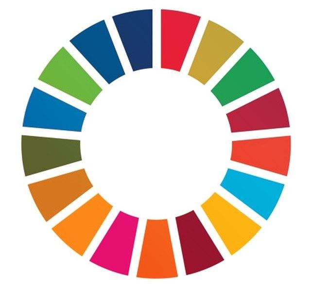 SDG-Wheel