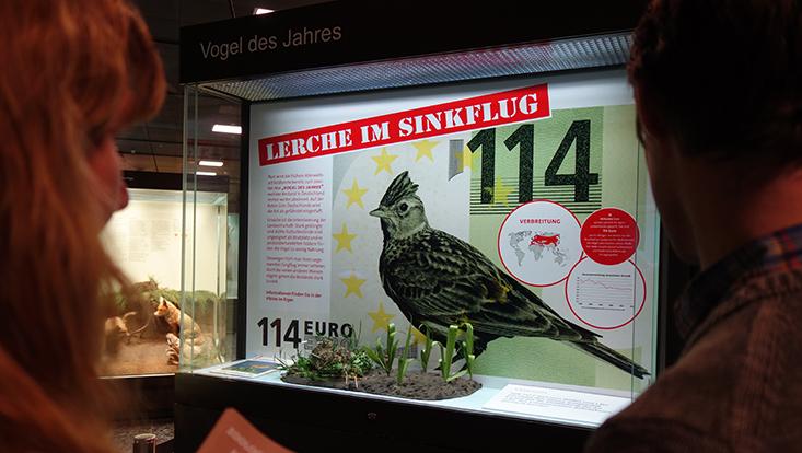 Vogel des Jahres Feldlerche