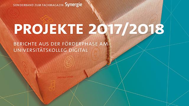 "Cover des Sonderbandes Synergie ""Projekte"""