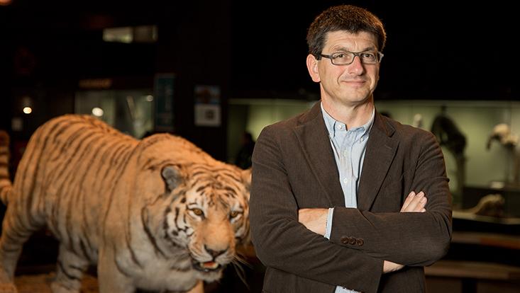 Matthias Glaubrecht Ausstellung Tiger
