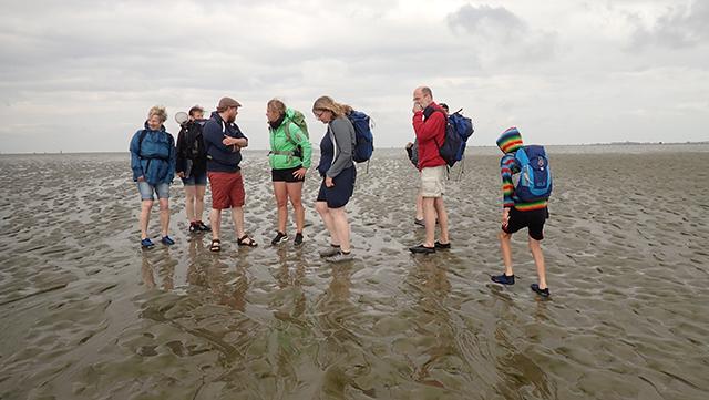 Wattwanderung GEO-Tag Cuxhaven