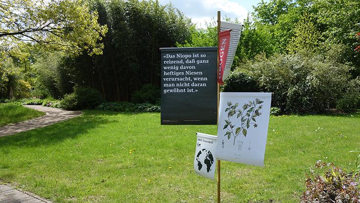 "Sonderausstellung ""Humboldt lebt!"" Botanischer Garten"