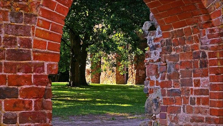 alter Ziegelmauer-Torbogen in Greifswald mit Blick auf sonnenbeschienene Bäume