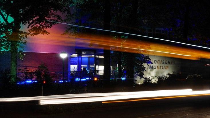 Der bunt beleuchtete Eingang des Zoologischen Museums mit Lichtstreifen eines vorbeifahrenden Busses