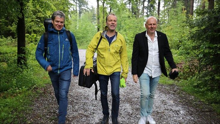 drei Musiker