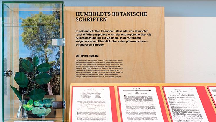 Humboldt lebt Sonderausstellung Loki Schmidt Haus