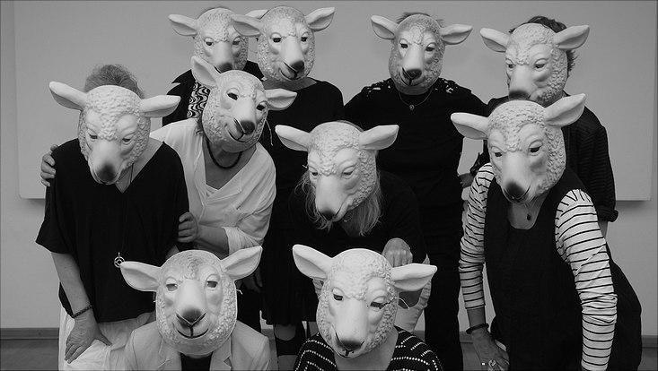 Schafsherde Demokratieprojekt
