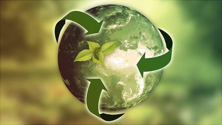 Eine grüne Weltkugel, die drei grüne Pfeile umgeben und auf der eine kleine grüne Pflanze wächst