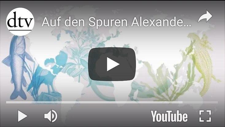 YouTube-Video dtv