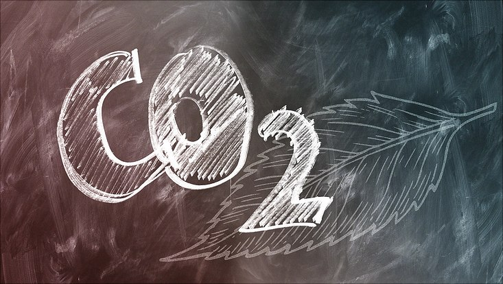 """Auf einer Tafel steht mit Kreide """"Co2"""", im Hintergrund ist ein Blatt gemalt."""