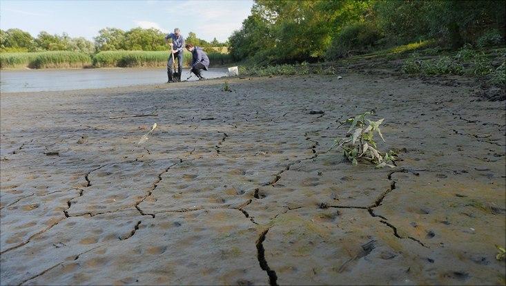 Wattboden Schweenssand