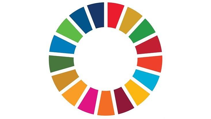 SDG Wheel. 17 bunte Farbtrapeze sind in einem Kreis angeordnet.